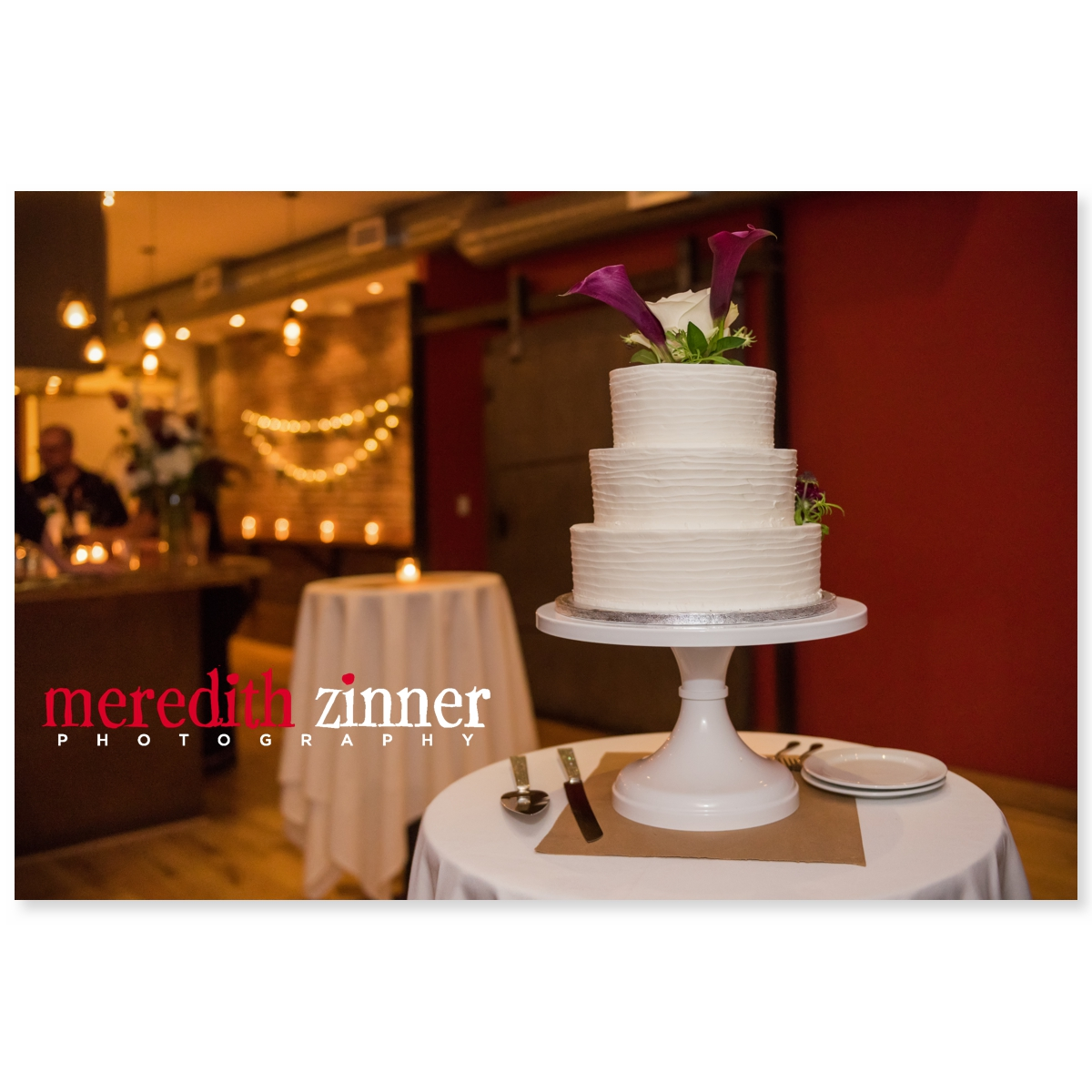 Meredith_Zinner_Photography_StilesCelebration_0287