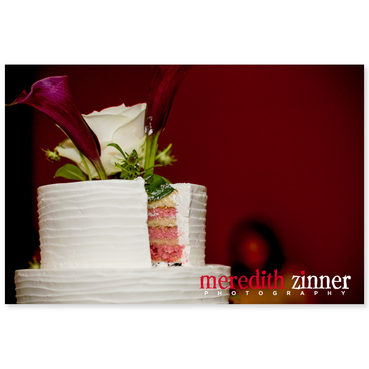 Meredith_Zinner_Photography_StilesCelebration_0322