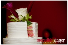 Meredith_Zinner_Photography_StilesCelebration_0322